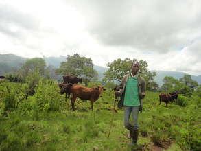 Member of the Bafmen Fulani Community at Work.