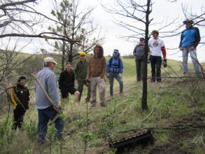 Planting trees creates community
