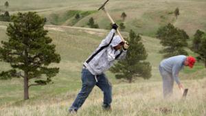FCPublic Media helped us capture tree planting