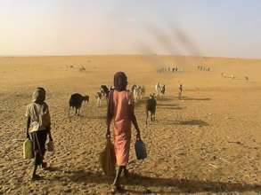 Walking across the hot desert to reach water