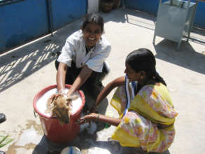 Dr. Pushpa giving a good ole' bucket bath.