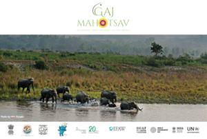 Gaj Mahotsav Cover