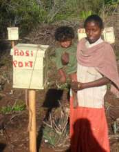 One Beneficiary woman with honey bee boxes