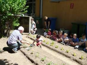 Vegetable garden in Italy