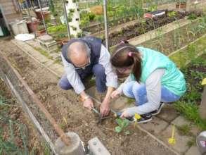 Vegetable garden in Italy_3