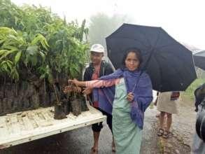Self-Help Group member buying peach tree saplings