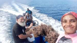 Transporting corals to the new algae-free nursery