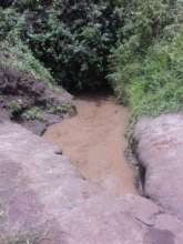 The dirty pond before the Borehole