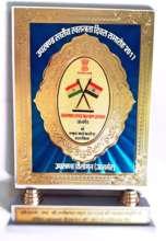 Independence Day, Best NGO Award