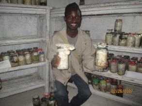 A trainee admires GCA's mushroom production effort