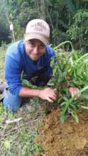 Alfredo on the job 3. Another baby tree planted