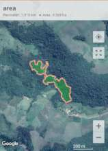 Deforested Land (area: 4.569 hectares/perimeter)