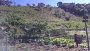 Lurdinha - Family farmer at her organic gardening