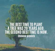 Wise words about tree planting