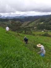 Hard work on the hillside!