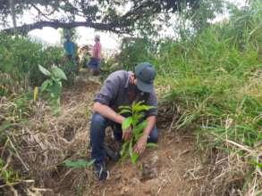 Planting the last seedlings!