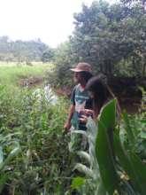 Visit with reforestation in mind
