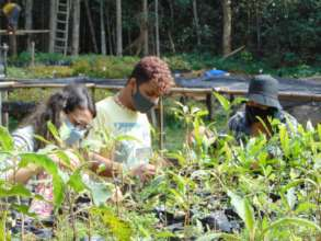 Local volunteers helping in the nursery