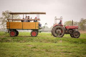 On a trip to the farm (C) Tafel / Schwelle
