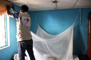 Hanging a mosquito bed net in a family's home