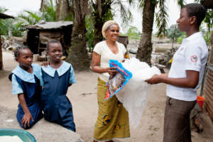 Community mosquito bed net distribution