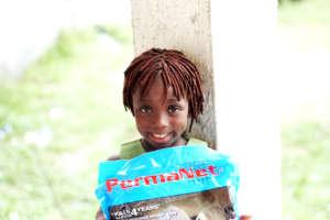 Help 200 families defeat malaria in Ikota, Nigeria