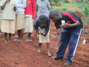 Youth planting seeds