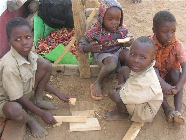 Help 100 Additional Families Grow Food in Zimbabwe
