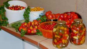 Winter prep-over 20 tomato varieties in our garden