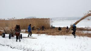 Harvesting team on the lake