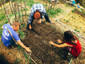Organic gardening - caring for our land
