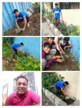 Environmental day celebration in the homes