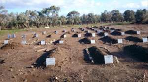 Our islands ... a cemetery of indentified children