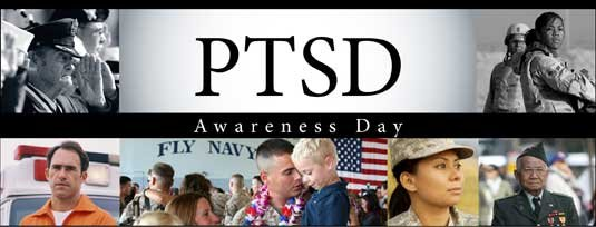 Psychosocial Support for Veterans Living with PTSD