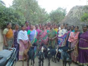 Group of Women helped by goat rearing project