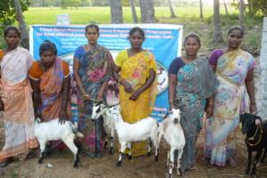 Women supported under flood relief - Cuddalore