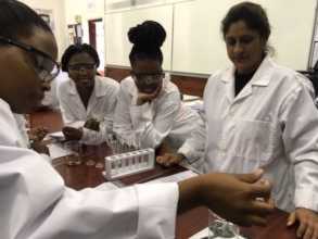 USP Career Bridge Students in the Chemistry Lab