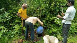 Removal of weed with villagers support