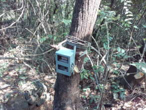Use of camera traps to document the wildlife