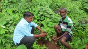 Tree Plantation at Choravane