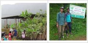 Tree Plantation with Children