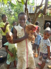 A Chicken Farm for 41 Orphans