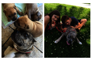 Jewels and her foster family