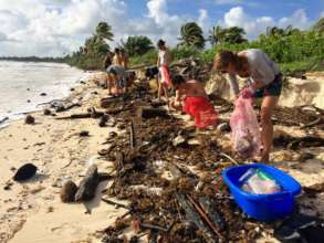 Beach cleaning in Mexico