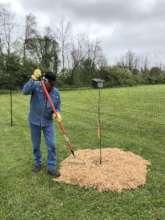 Mulching trees at the Saganing Tribal Center