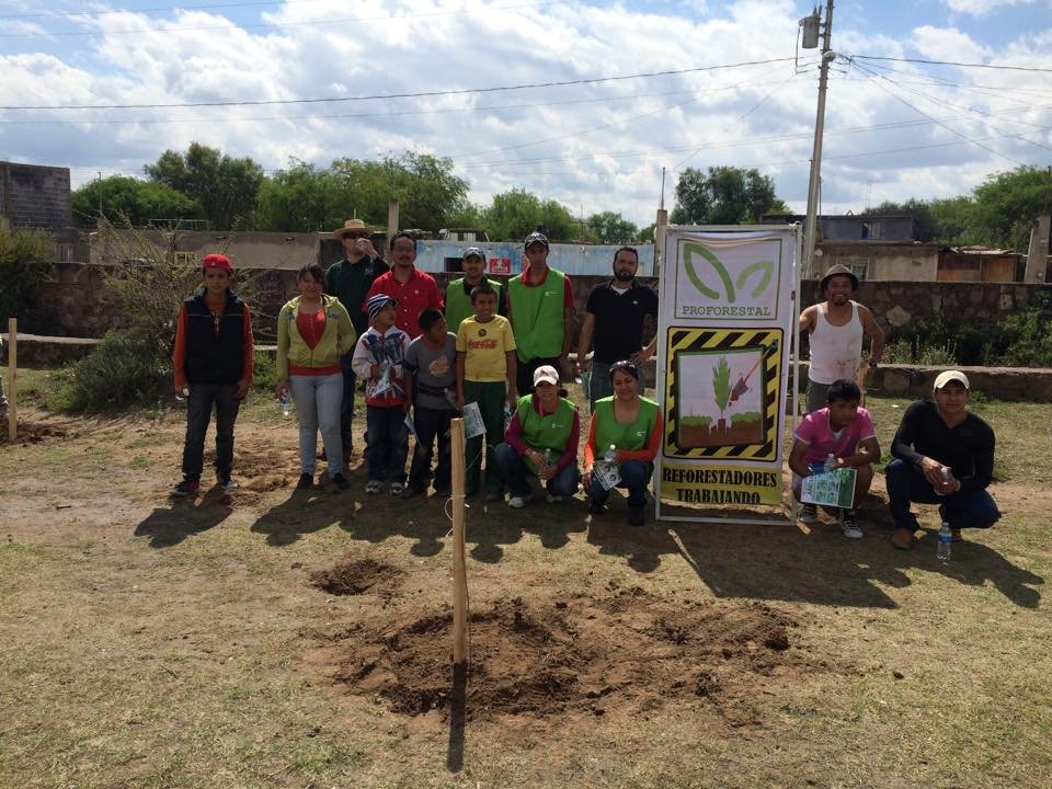 Plant & protect 10000 trees in San Luis Potosi