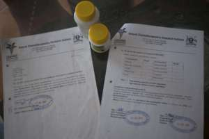 Verified Herbal Medicine