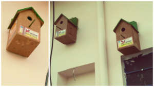 install eco-friendly nests at outdoor