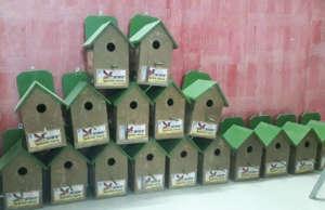 Save the innocent Sparrow Birds