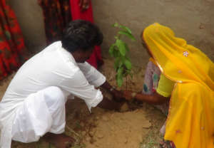 Tree Plantation for Protect Environment & Earth